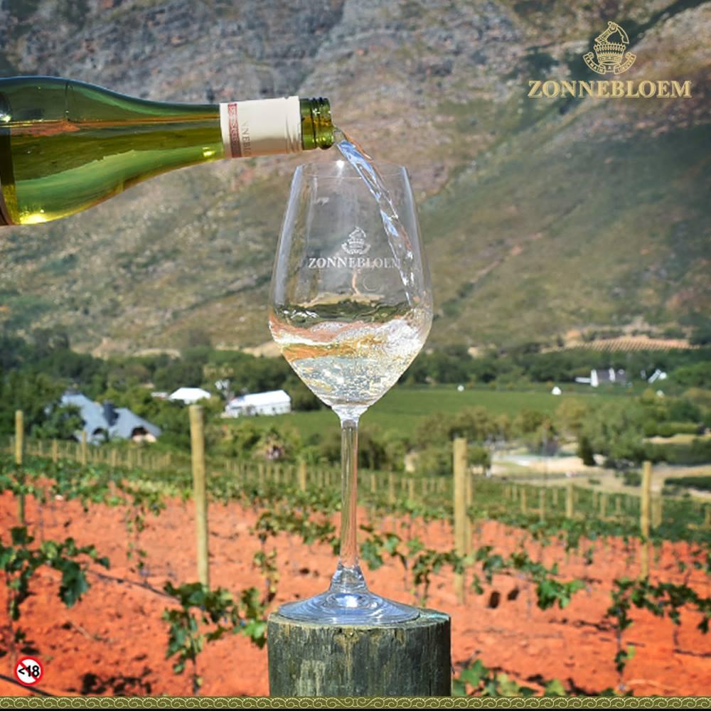 """<img alt=""""Dumisani Mathonsi pouring wine as new white winemaker at zonnebloem"""">"""